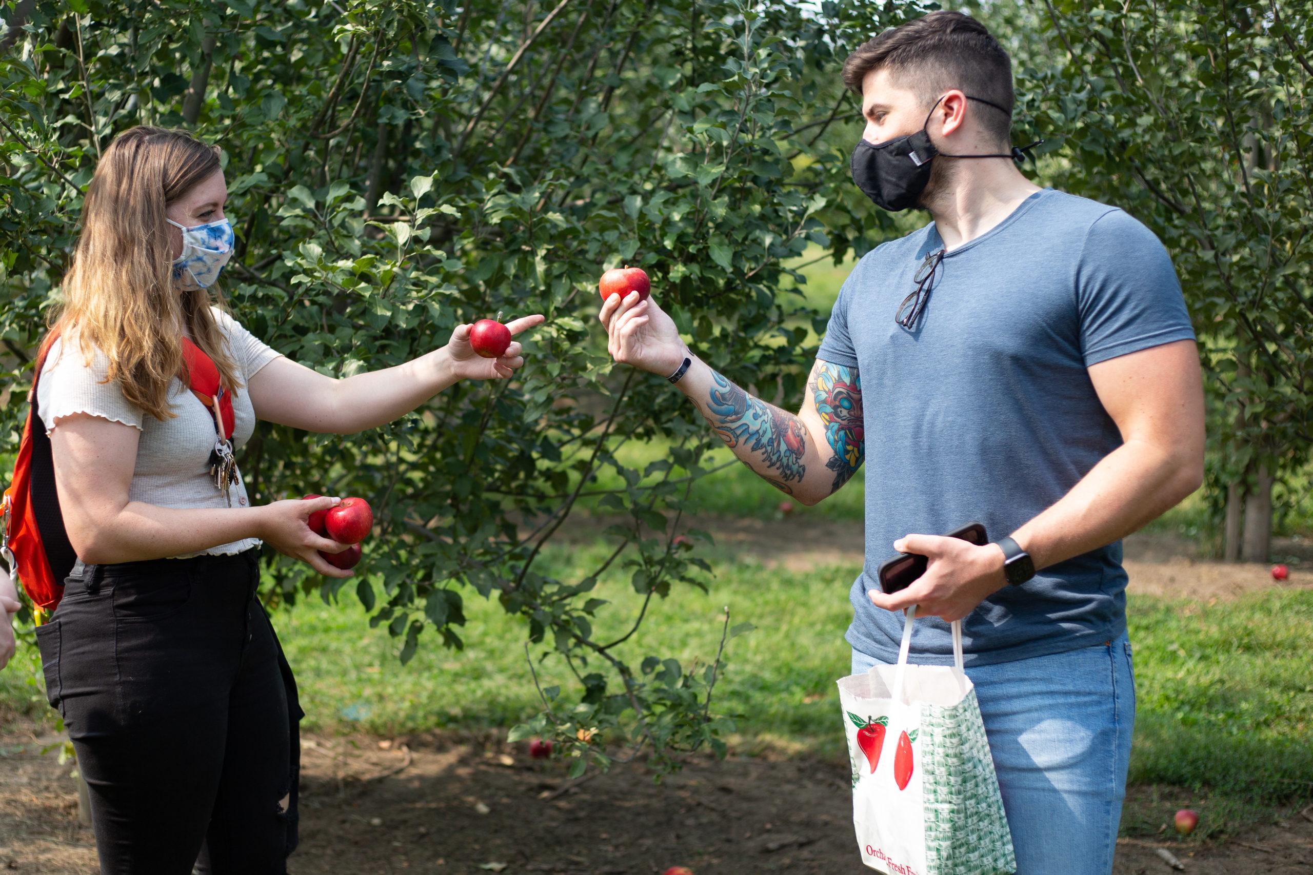 Image of a couple wearing masks comparing apples at Arbor day Farm