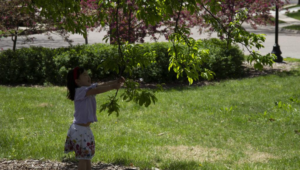 Picnic 3 1021x580 - Nebraskans embrace spring weather