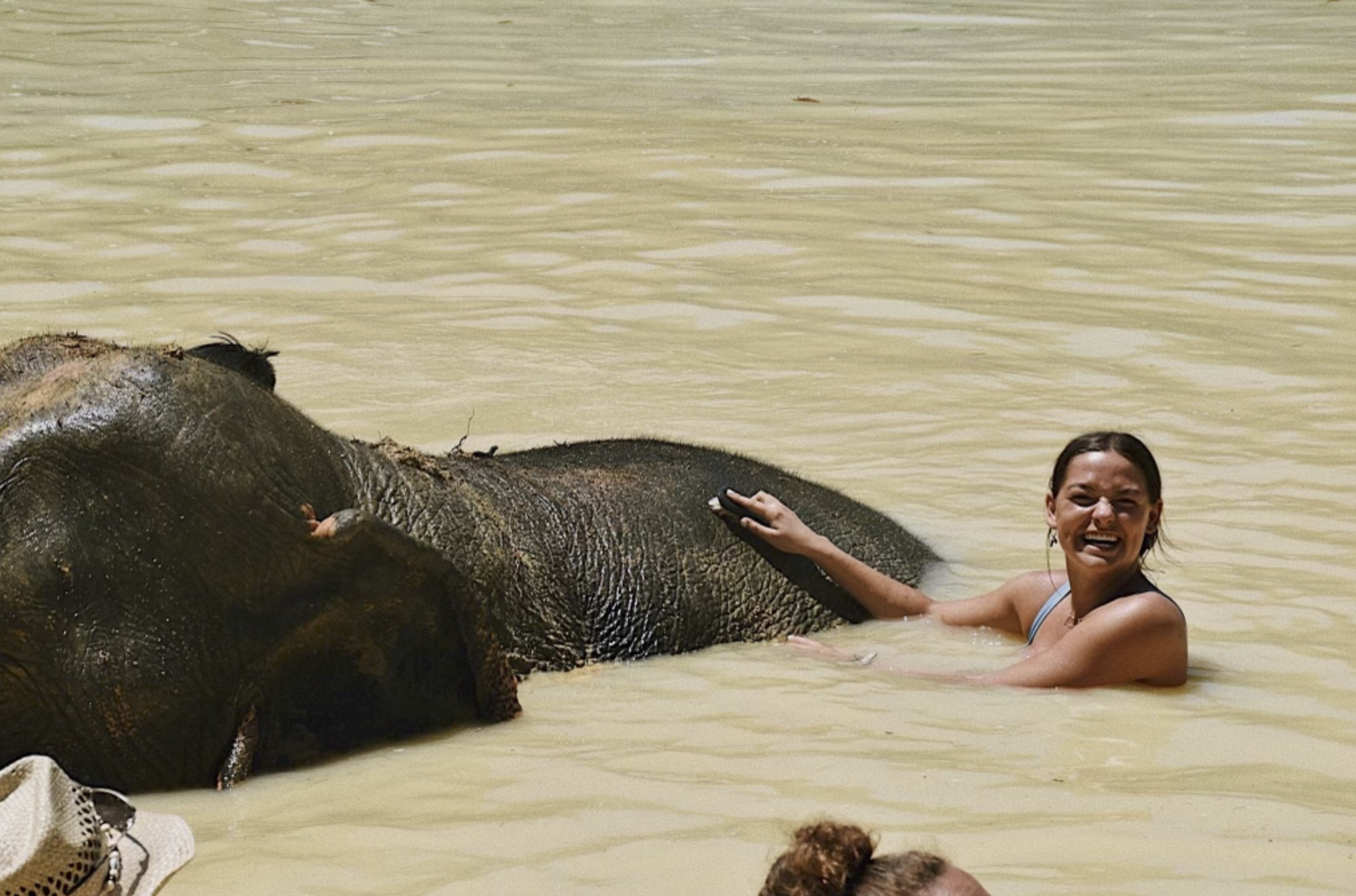 Woman in water with an elephant