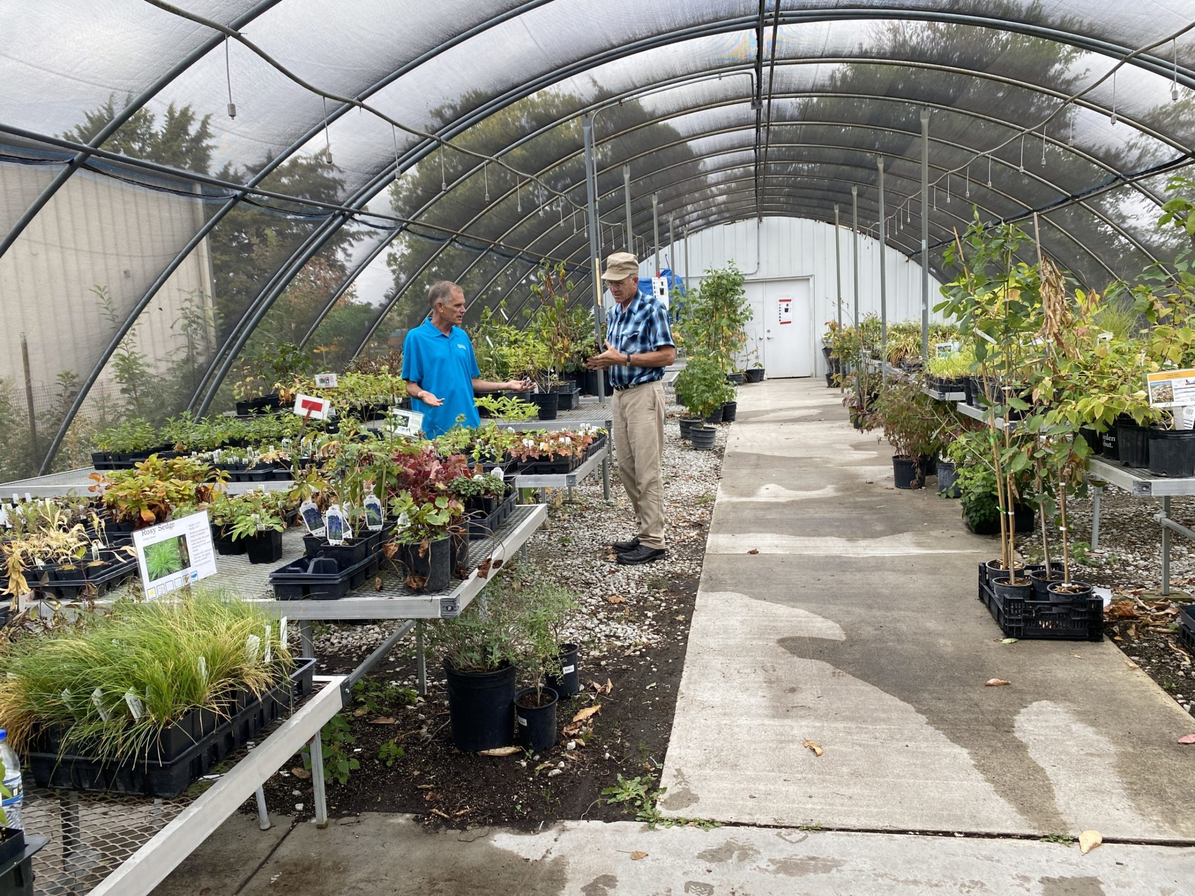 Bob Henrickson answer his customers question inside the greenhouse